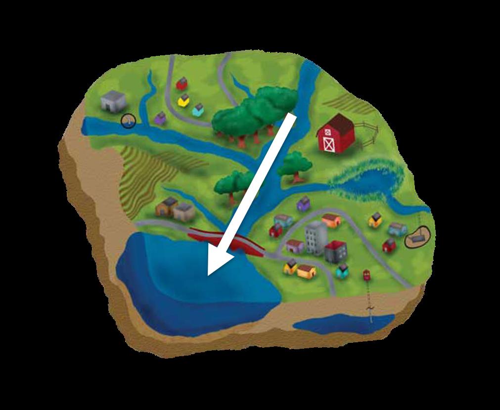 catchment basin